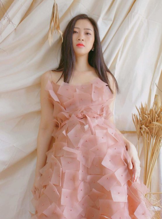 Lieu Ha Trinh x Ellise Dress 3